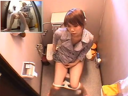 【オナニー隠し撮り動画】自宅トイレでバイブ持ち込みイキまくっているお姉さん!