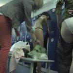 【更衣室盗撮動画】海外フィットネスクラブの女子ロッカールーム内を潜入激写!美女もいますが怪物も揃ってますw