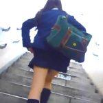 【パンチラ盗撮動画】観覧注意のリアル映像!本物制服女子高生の現役の輝きを凝縮させた追跡逆さ撮りパンティ!
