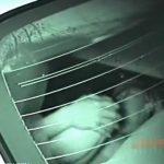 【SEX盗撮動画】深夜のお車の中でカーセックスに夢中で没頭しているヒト化のオスとメスの映像を捕獲したw