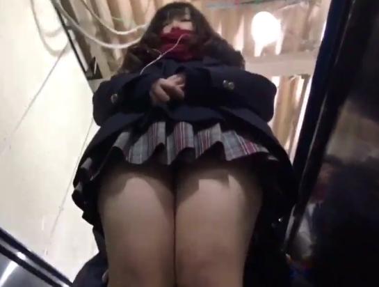 【盗撮動画】女子高生の下半身に比類なき執着をみせるパンチラ撮り師!鮮度抜群肉感良好なフトモモ萌えw