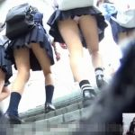 【HD盗撮動画】プルンプルのフトモモの肉質タマラン!現役JK美少女達のパンチラをストーカー撮影www