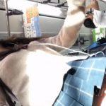 【盗撮動画】獲物を追い回すような緊迫感!!!制服女子校生のピカピカ下半身からパンチラ攻略!!