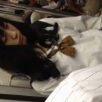 【HD盗撮動画】超絶美少女で斜に構えたオタク系の女子校生を捲りパンチラとか危険!!