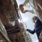 【盗撮動画】本物ナースの生パンティ攻略!コンビニで買い物中にパンチラを逆さ撮り!!