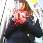 【盗撮動画】ガチもの危険映像!電車で可憐な美少女JKを発見してパンチラ隠し撮り!!
